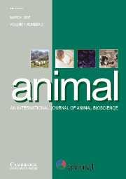 animal Volume 1 - Issue 2 -