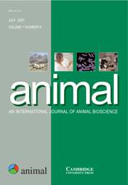 animal Volume 1 - Issue 6 -