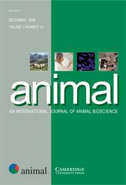 animal Volume 2 - Issue 12 -