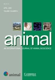 animal Volume 2 - Issue 4 -