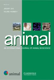 animal Volume 4 - Issue 1 -