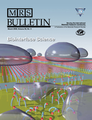 MRS Bulletin Volume 30 - Issue 3 -  Biointerface Science
