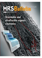 MRS Bulletin Volume 42 - Issue 2 -  Stretchable and Ultraflexible Organic Electronics