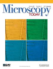Microscopy Today Volume 19 - Issue 1 -