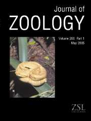 Journal of Zoology Volume 266 - Issue 1 -