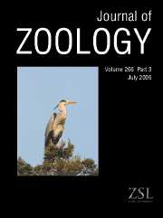 Journal of Zoology Volume 266 - Issue 3 -