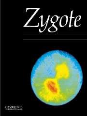 Zygote Volume 12 - Issue 4 -