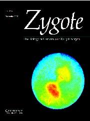 Zygote Volume 13 - Issue 4 -