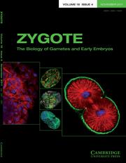 Zygote Volume 19 - Issue 4 -