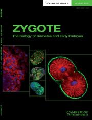 Zygote Volume 20 - Issue 3 -