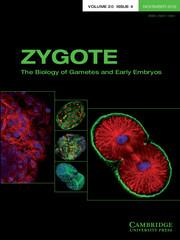 Zygote Volume 20 - Issue 4 -