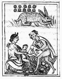 Toxic Small Accessories Case Magic Occult Mystical Pagan