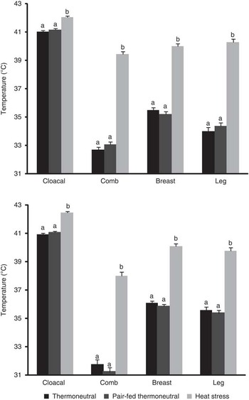 Carcass and meat quality traits of chickens fed diets concurrently ...