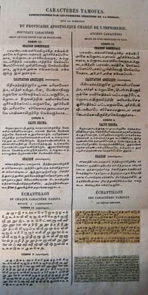 Failed Legacies of Colonial Linguistics: Lessons from Tamil