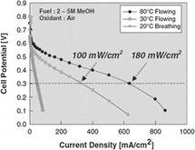 A review on direct methanol fuel cells – In the perspective