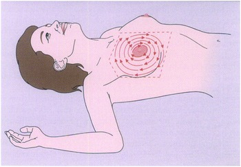 Breast Cancer Screening Chapter 44 Clinical Gynecology