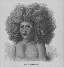 Culture (Part III) - Afro-Latin American Studies