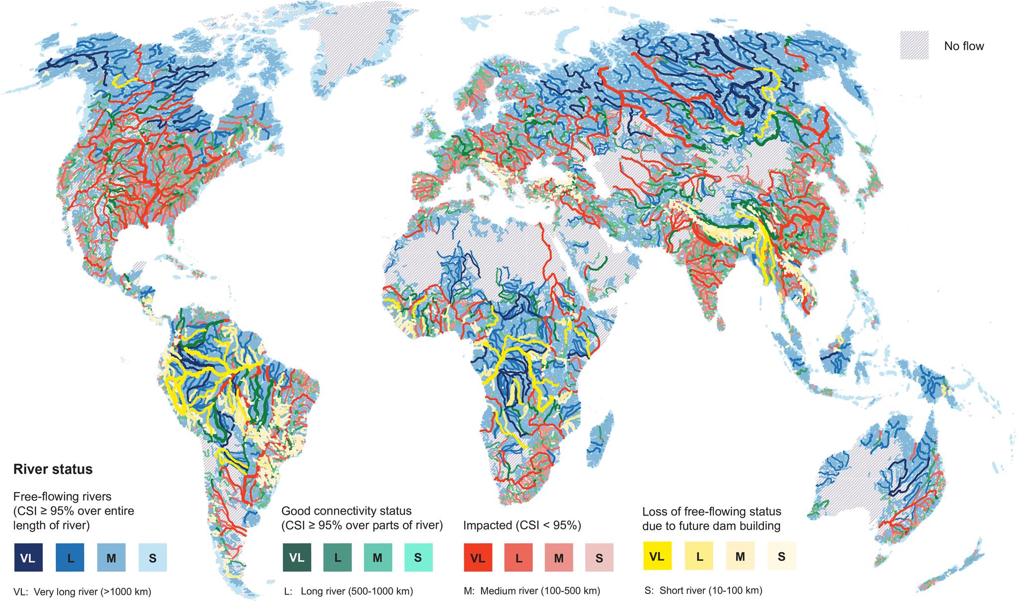 Status de conectividade global do rio e distribuição de rios que perdem seu status de fluxo livre entre os cenários de barragem atual e futuro