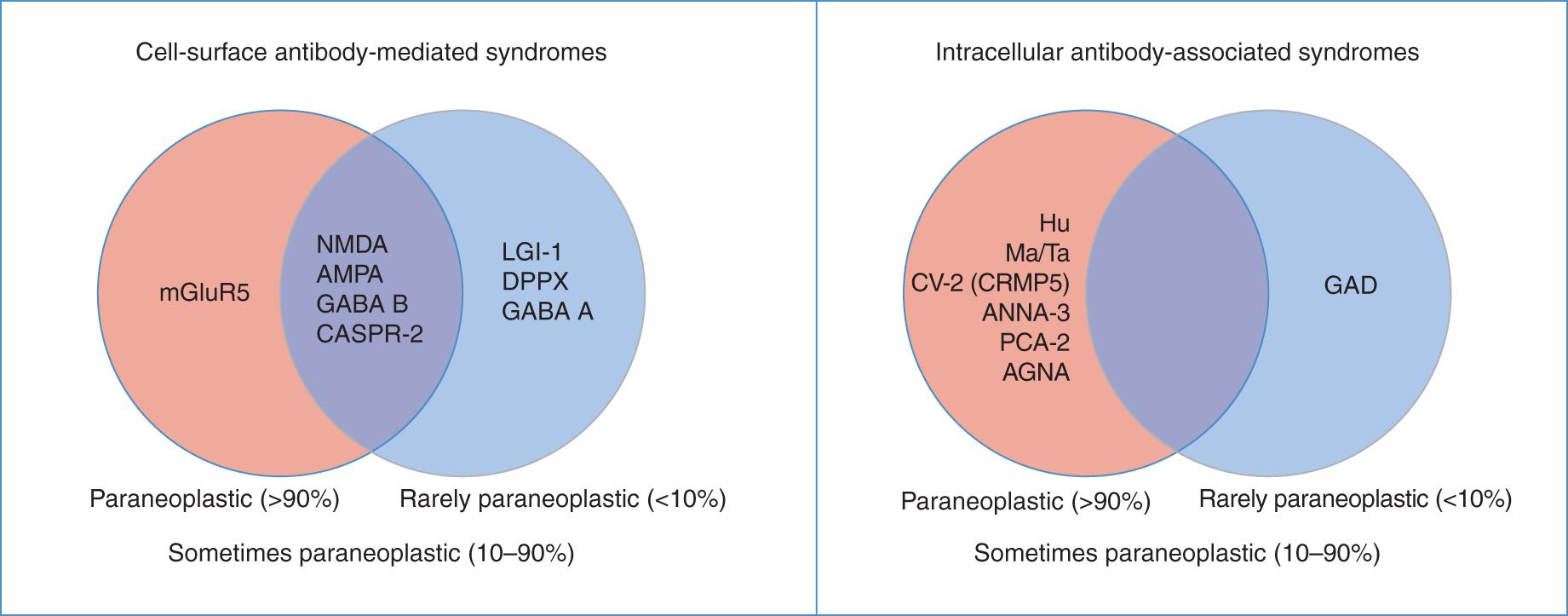 Autoimmune antibody-associated encephalopathy and dementia