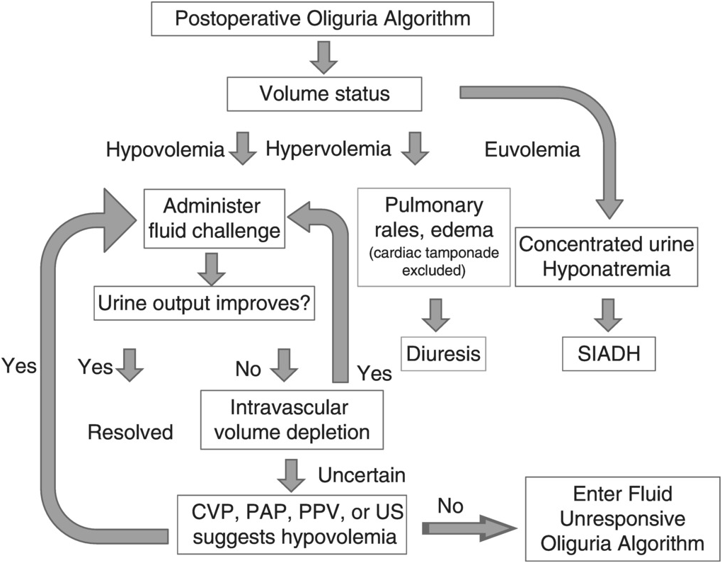 Oliguria and postoperative urinary obstruction (Chapter 35