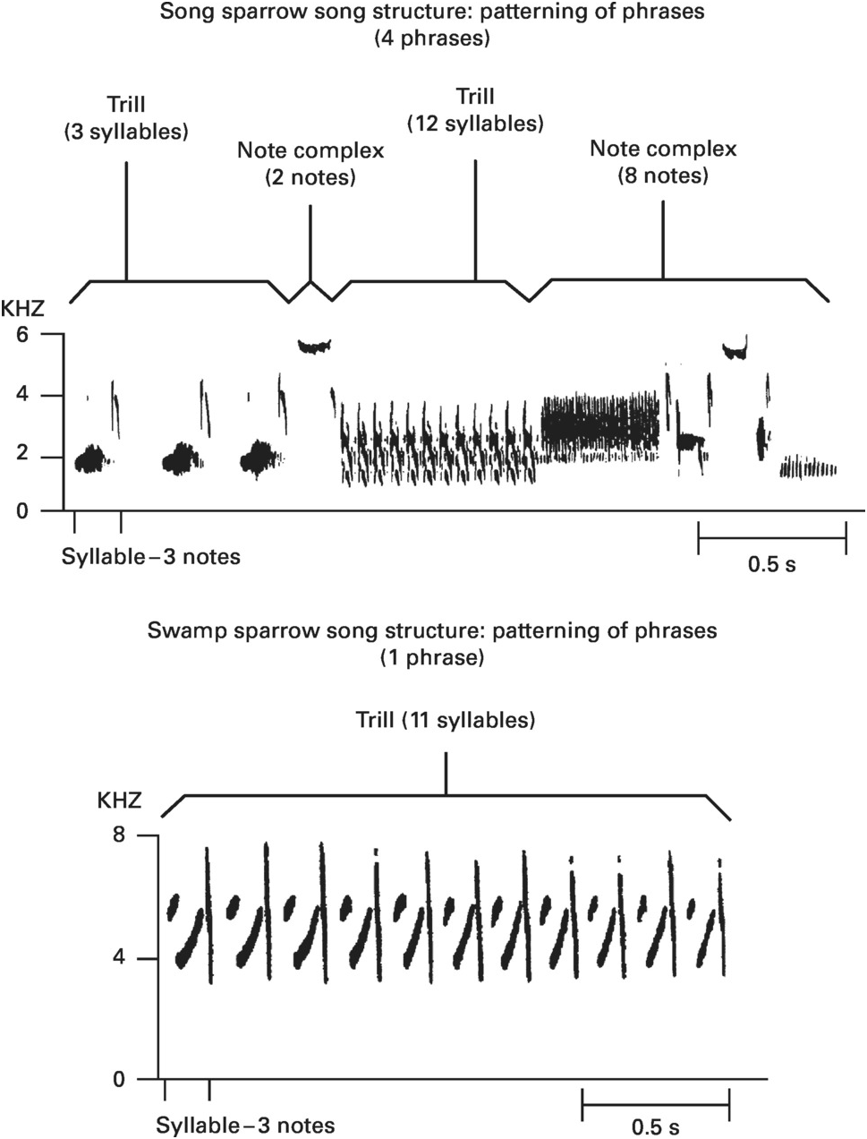 Mechanisms and Proximate Processes of Vocal Communication