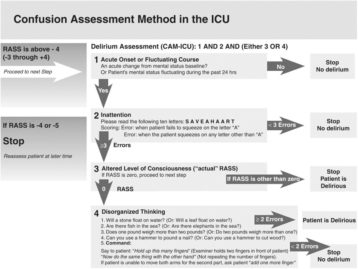 Delirium in critical care: monitoring tools (Chapter 7