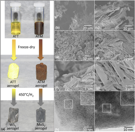 Carbon aerogel evolution: Allotrope, graphene-inspired, and