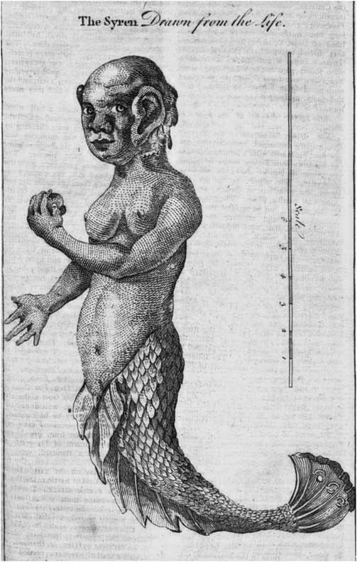 "Such Monsters Do Exist in Nature"": Mermaids, Tritons, and"