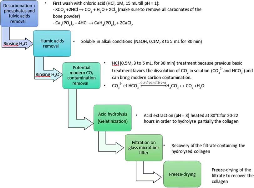 Vad är Radiocarbon dating metod