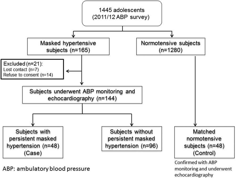 Hipertensión persistente переводе