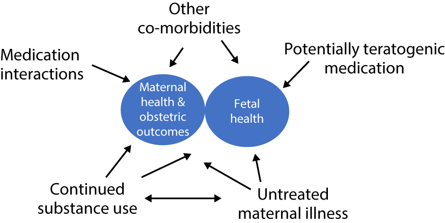 Substance Use Disorders in Women and Pregnancy (Section 1
