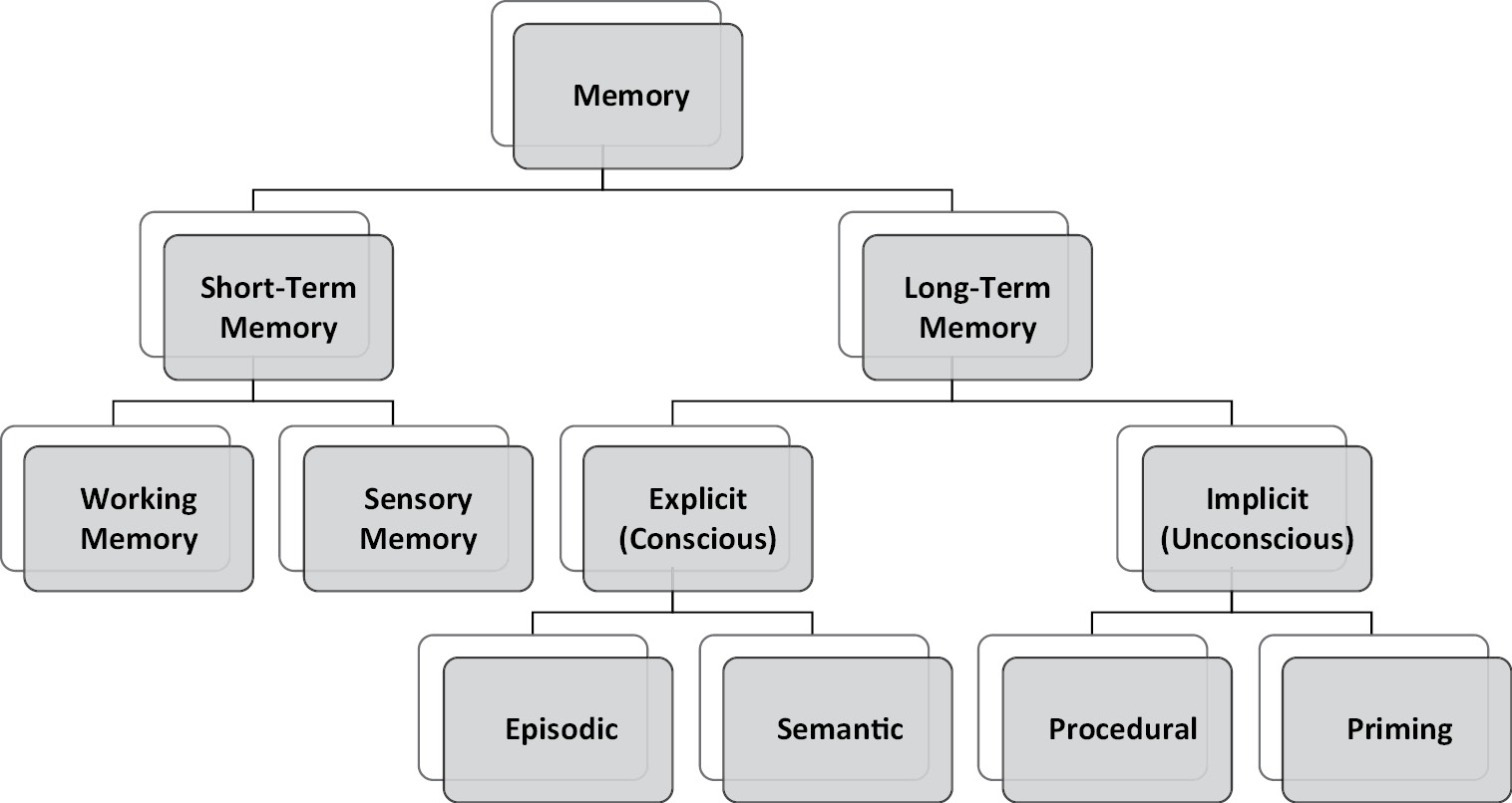 Evidence Based Cognitive Rehabilitation Section 1 Cognitive Rehabilitation For Pediatric Neurological Disorders