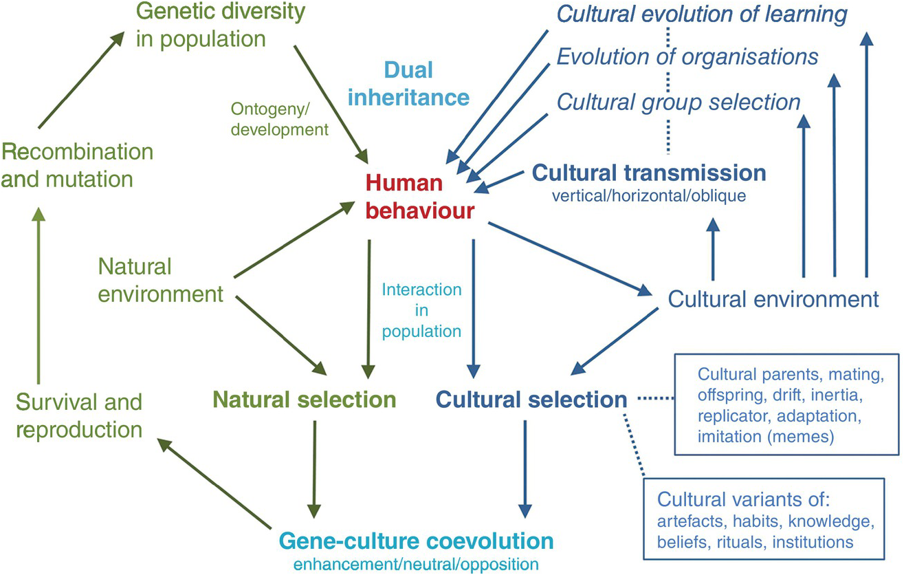 Evolutionary Social Sciences Part Iv Human Evolution Beyond Biology And Culture