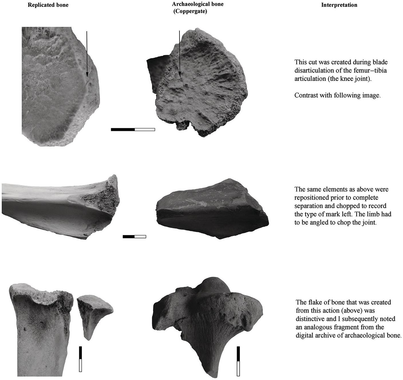 The Practice of Butchery in Archaeo-Historic Societies (Part