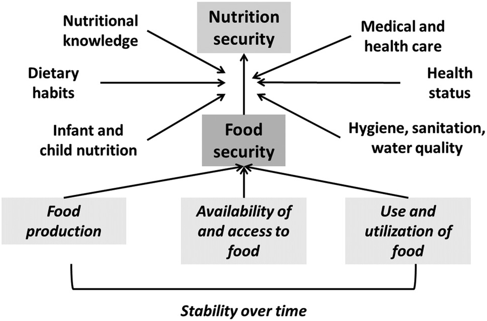 The Impact of Global Climate Change on Nutrition Security: A