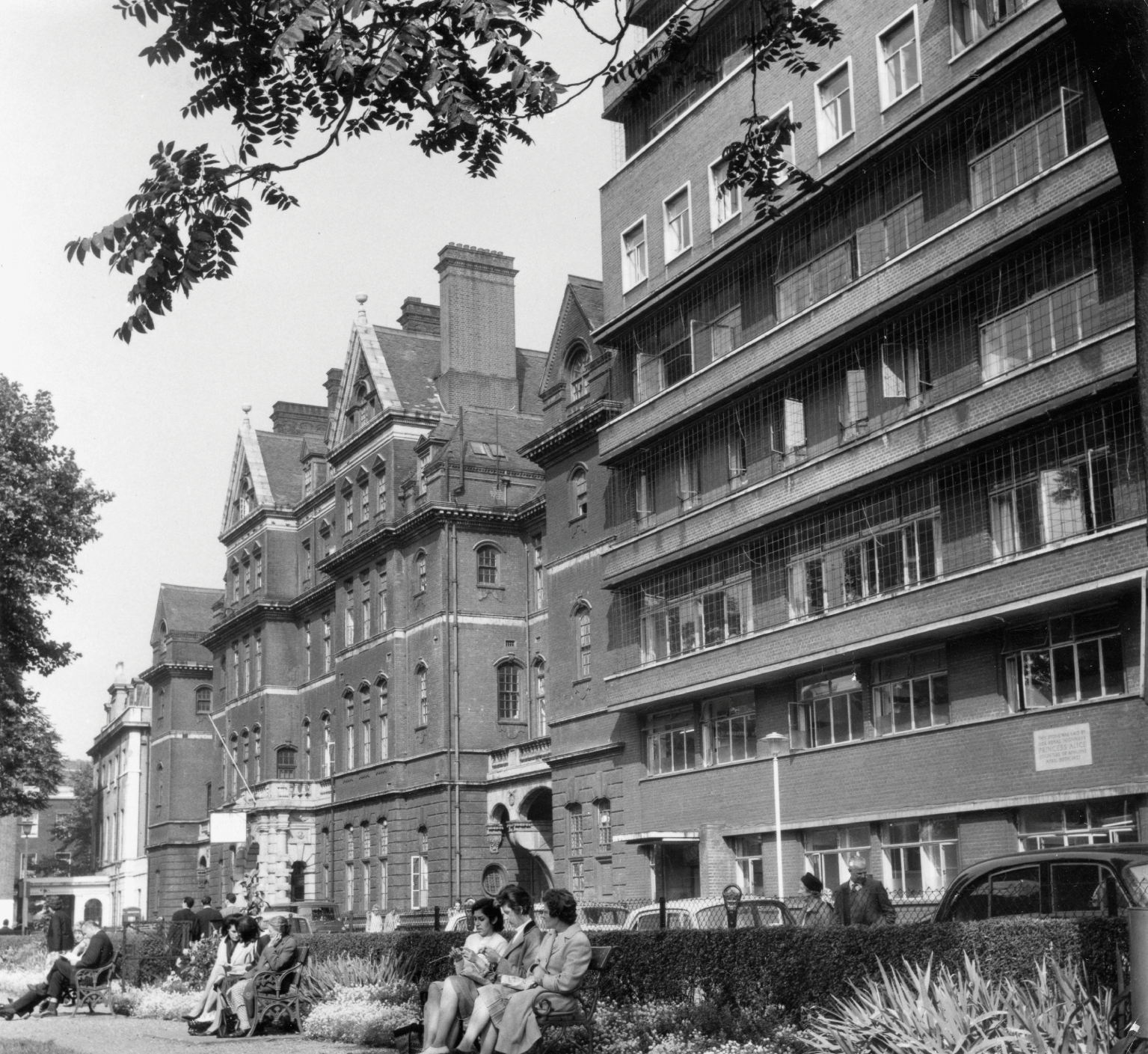 Queen Square, the Salmon Pink and Other Hospital Buildings