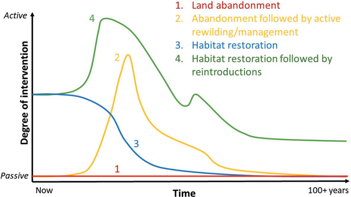 Rewilding through land abandonment (Chapter Six) - Rewilding