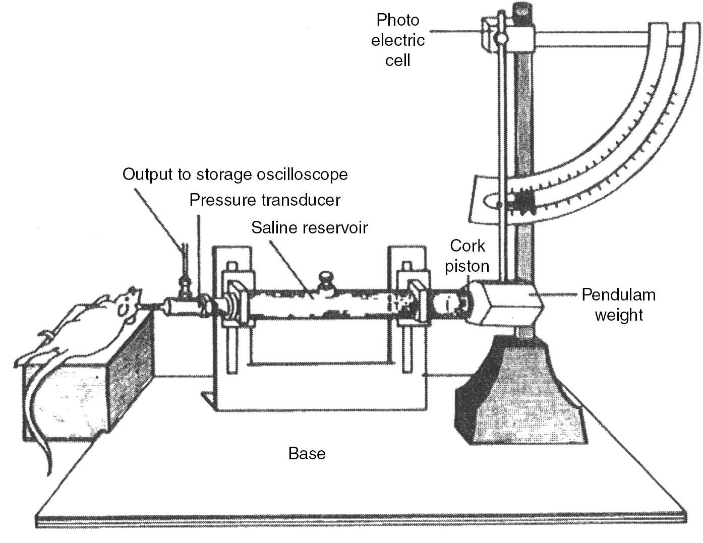 Wiring Diagram Besides 1994 Ford F 150 Fuse Box Diagram On Tbi Fuel