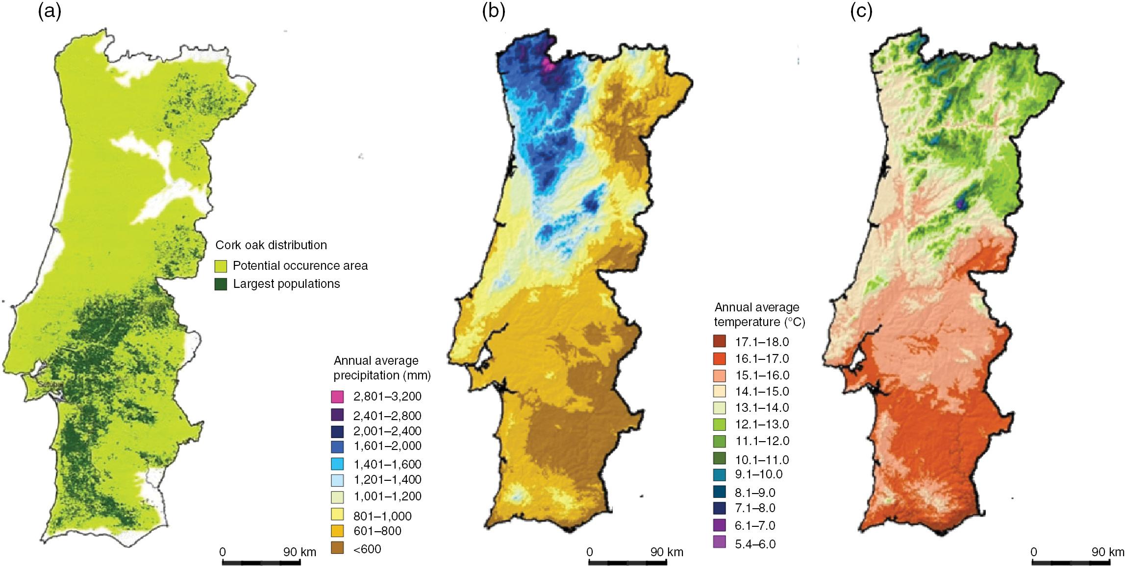 The Influence of Endophytes on Cork Oak Forests Under a