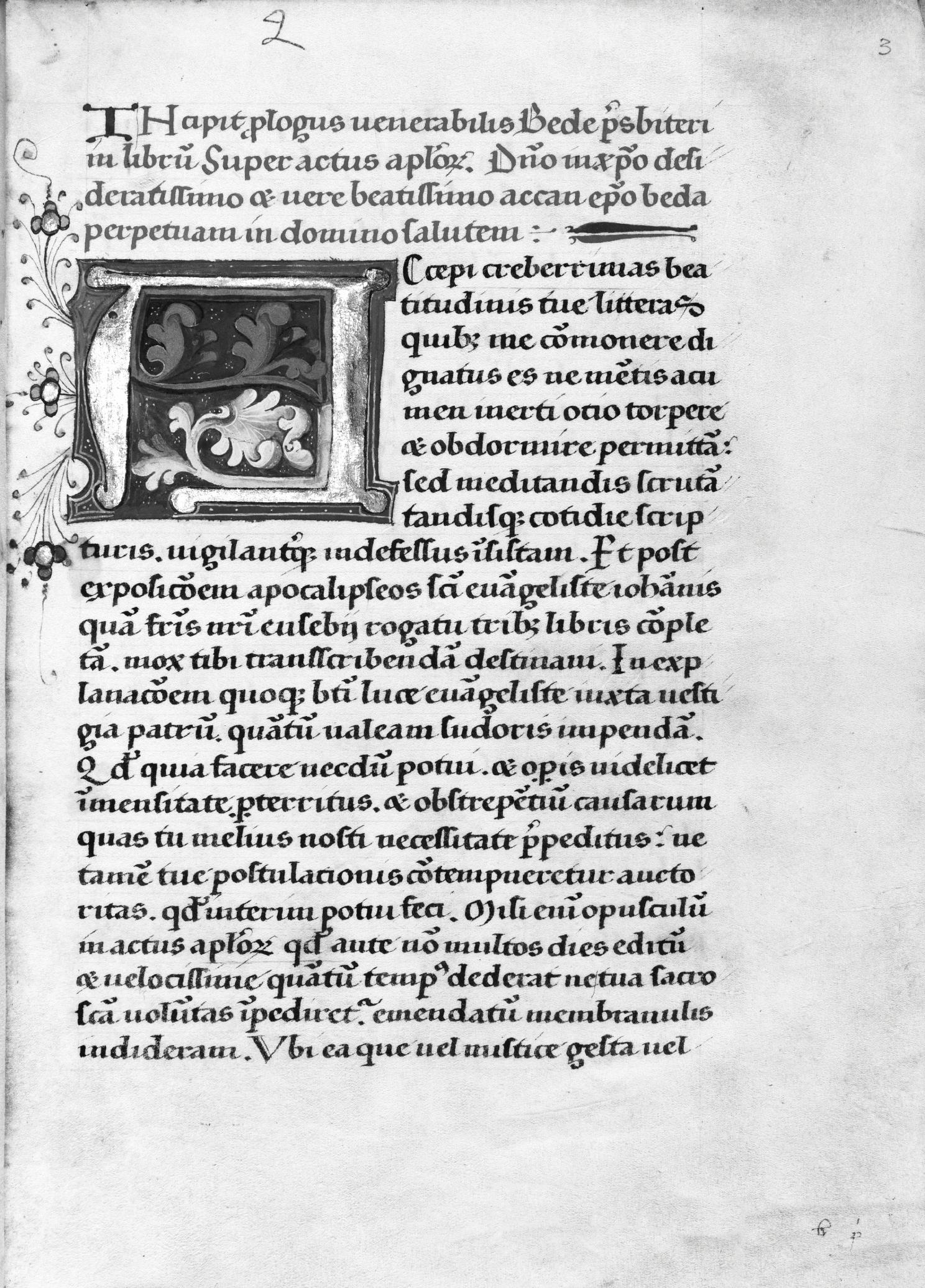 The Dutch Connexion (Chapter 4) - The Renaissance Reform of