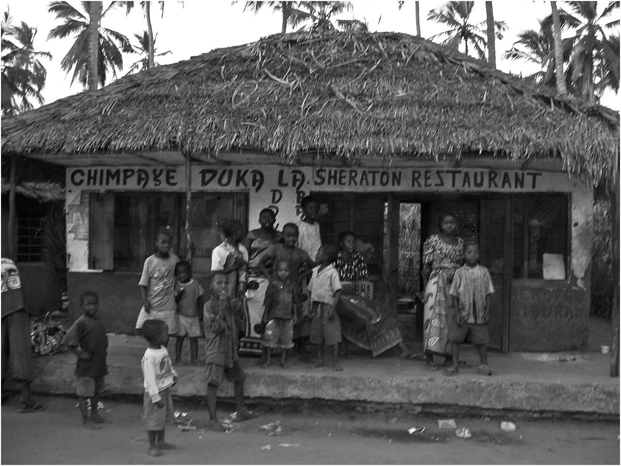 The Politics of Development in the Era of Liberalisation