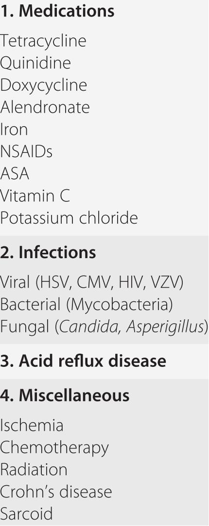 Gastrointestinal disease in the elderly (Chapter 22) - Reichel's ...