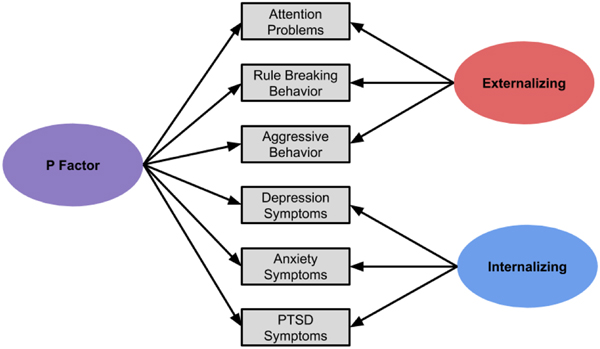 Difficulties with emotion regulation as a transdiagnostic