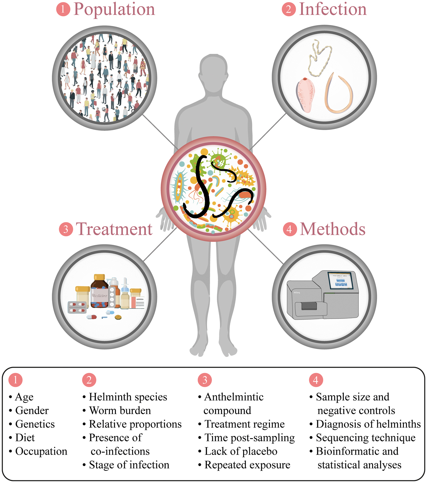 helminth infection microbiota