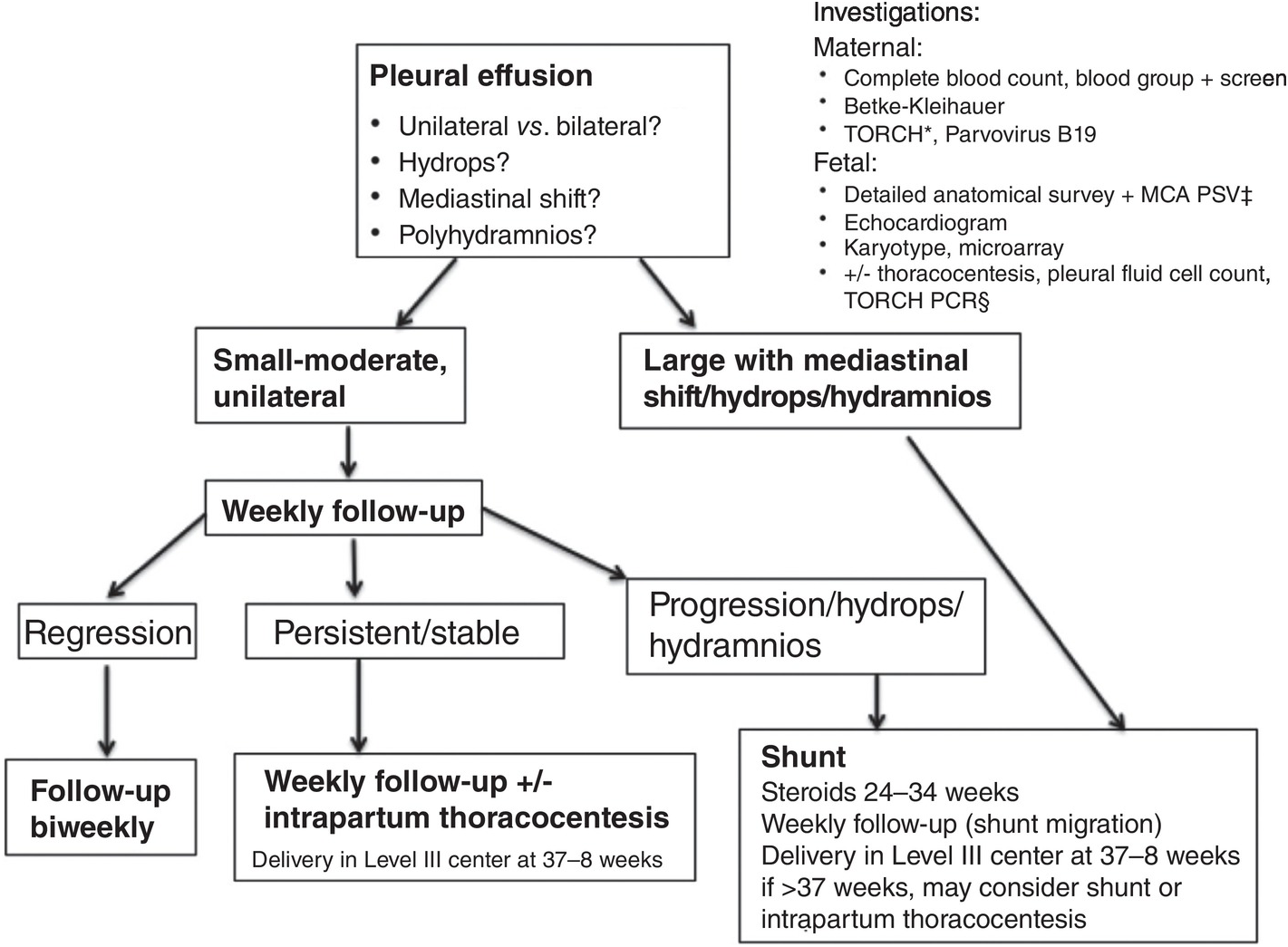 Steroids in pleural effusion do steroids show up on a cdt