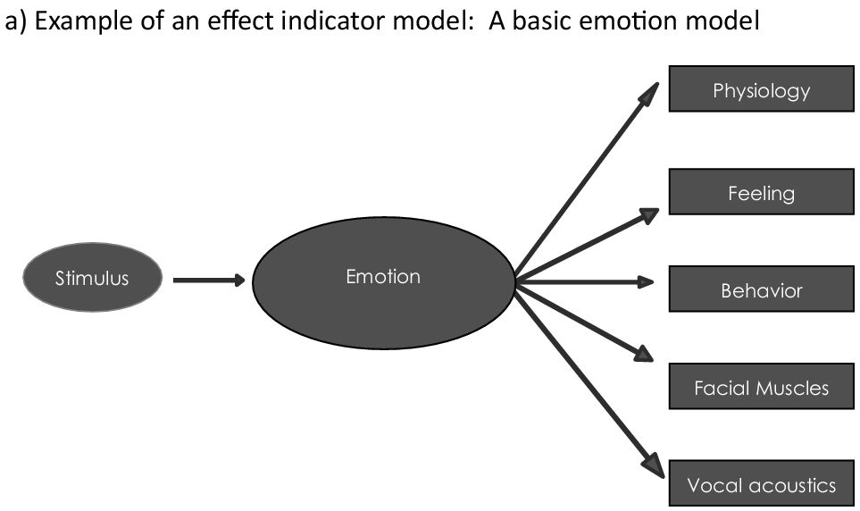 Inducing and Measuring Emotion and Affect (Chapter ten