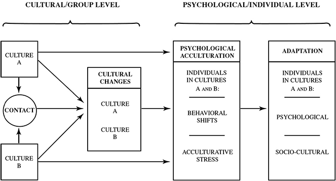 acculturation ib psychology