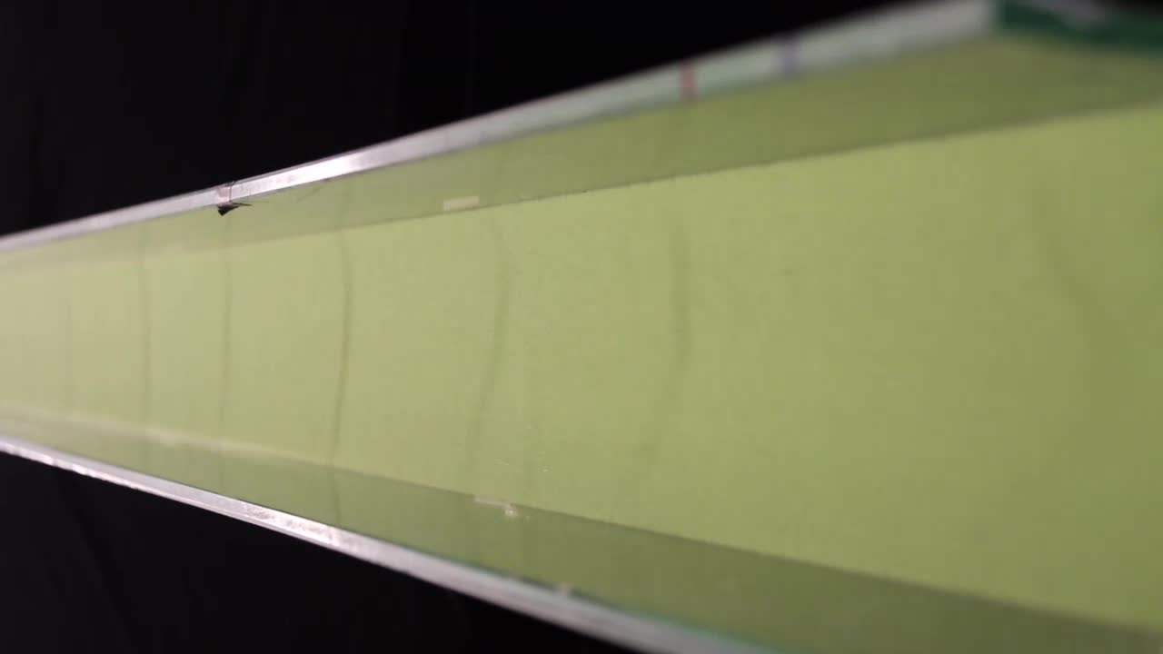 The kinematics of bidisperse granular roll waves | Journal