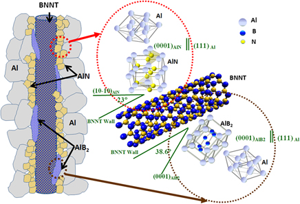 Insight into reactions and interface between boron nitride