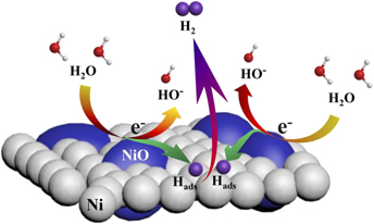 Enhanced electrocatalytic hydrogen evolution activity of